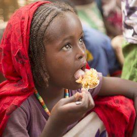 Africa Food Crisis
